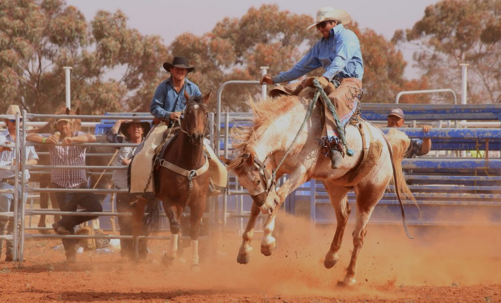 Ivanhoe rodeo