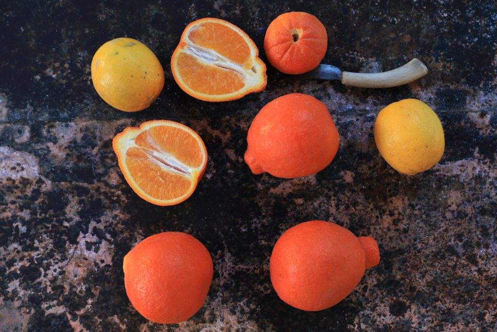 Winter Citrus 0013
