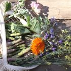 Spring pickings