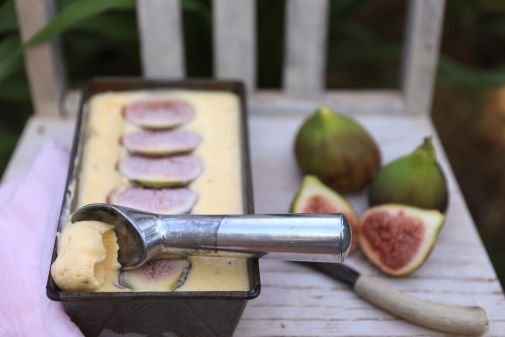 Fig Semifreddo